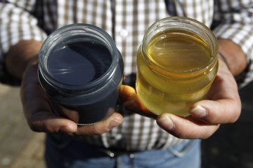 French apiarist Frieh holds a sample of honey besides a blue colored one at his home in Ribeauville